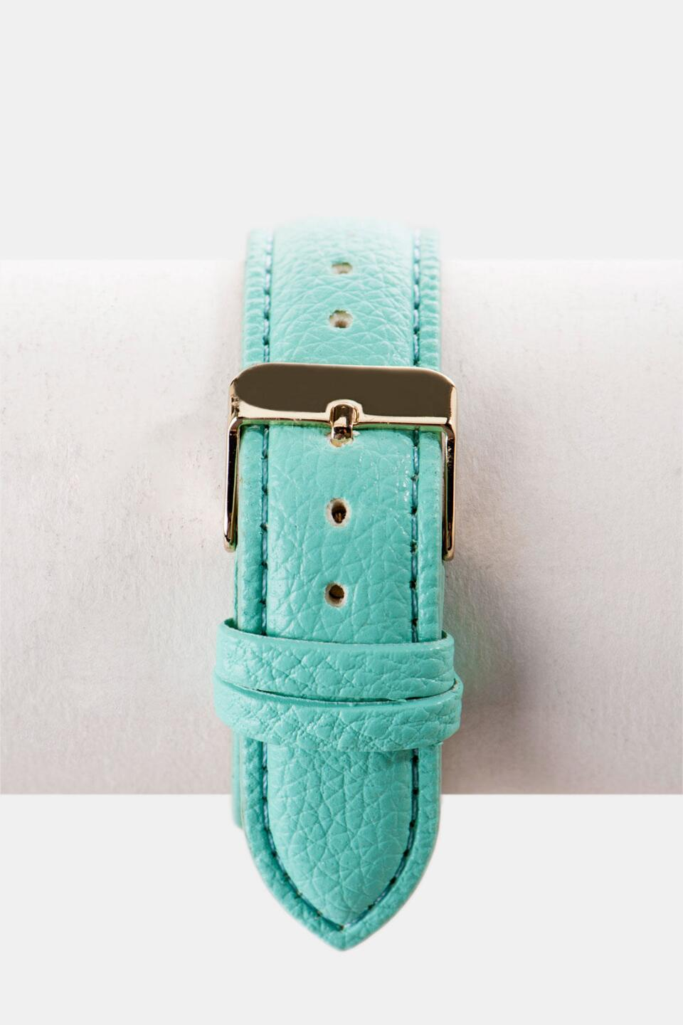 Beverly Hills Striped Watch in Mint-  mint-clback